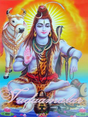 Lord Shiva and Nandhi Picture Gift Photo Card